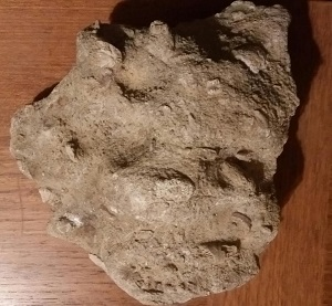 FossilRock